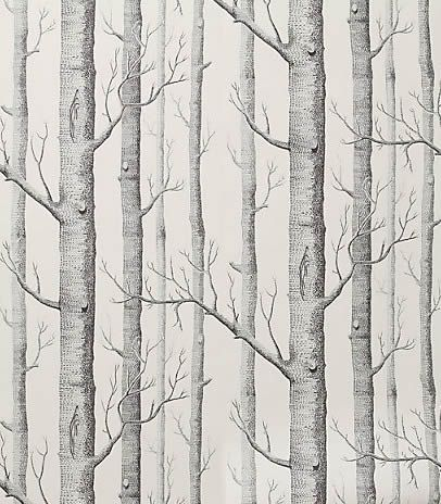 Birch Wallpaper: Cole & Sons I will always love and I will not rest.