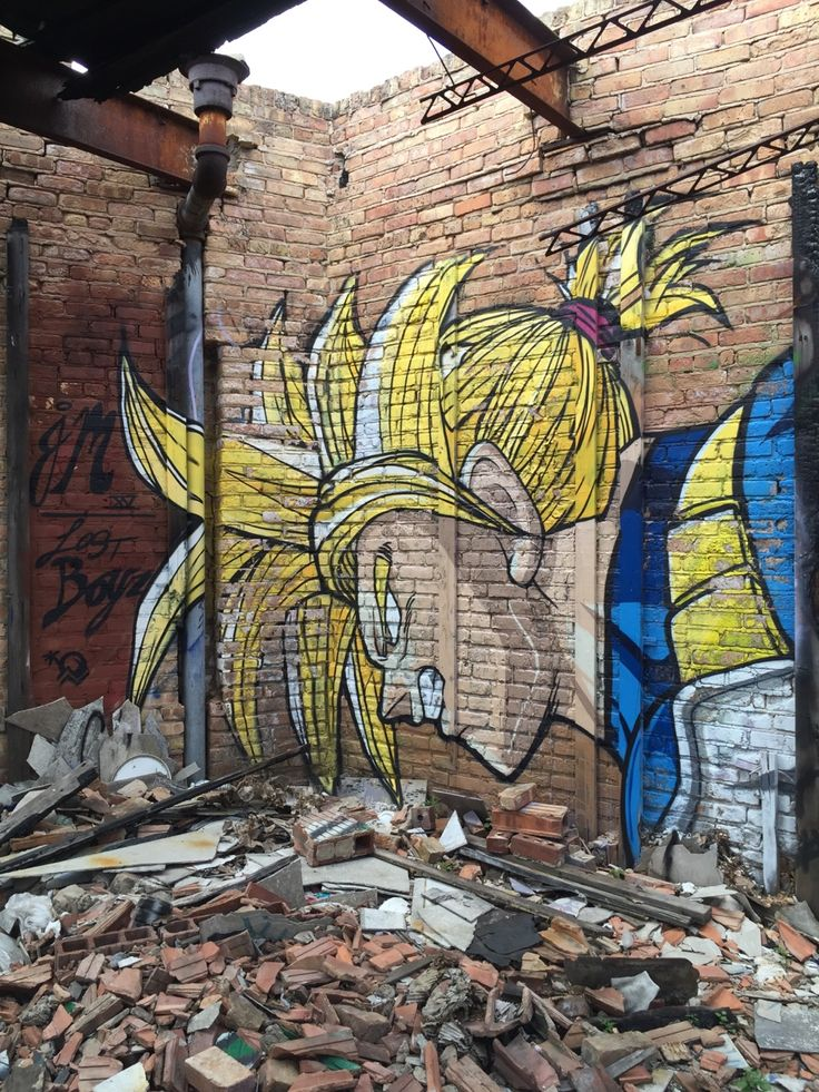 1376 best united states street art images on pinterest for Dragon ball z mural