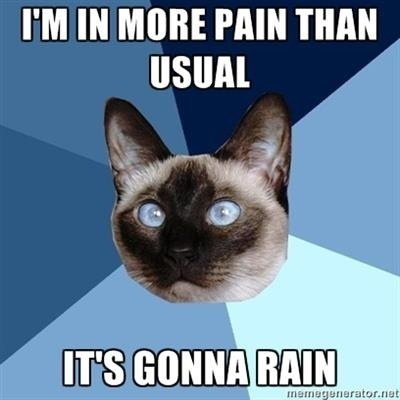 I can forecast rain more accurately than our weatherman!  Chronic illness cat tootiredtolivebutstillbreathing.blogspot.com: