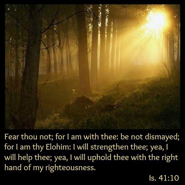 72 Best Bible Verses Images On Pinterest Bible
