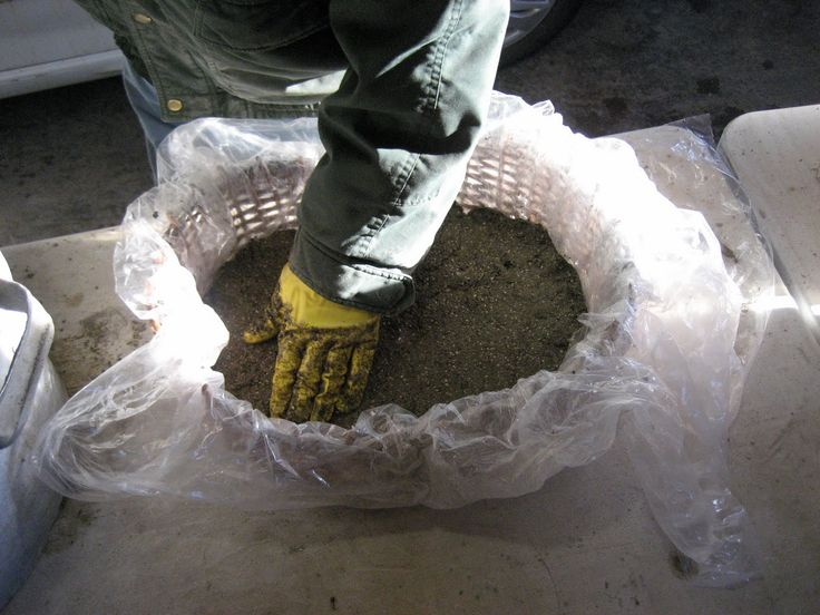39 best images about hypertufa on pinterest gardens for Concrete craft molds