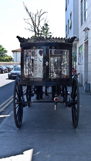 Bloomsday In Dun Laoghaire - Traditional Horse Drawn Hearse