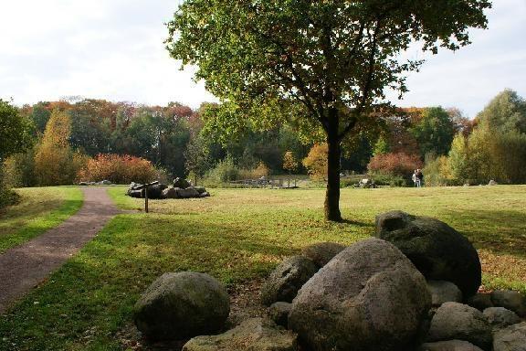 De grootste tuin van Overijssel: het jubilerende Arboretum Poortbulten is 100 jaar oud in De Lutte