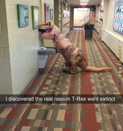 Why the T Rex doesn't exist