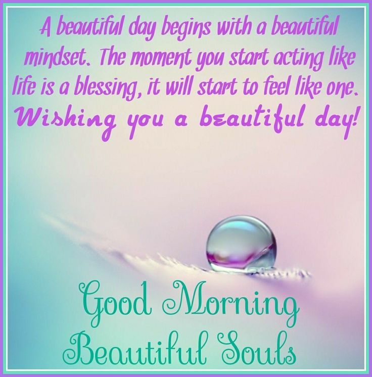 Good Morning Beautiful Souls! Happy Tuesday! #goodmorning #goodmorningpost #good #dew #morningpost #morning #happytuesday #happy #tuesdaymorning #tuesday #gm #tuesdaymemes #gmw #tuesdays #tea #coffee #workgrind #day #morninggrind #grind #riseandshine #blessings #am #post #posts #meme #memes #memesdaily #blessing