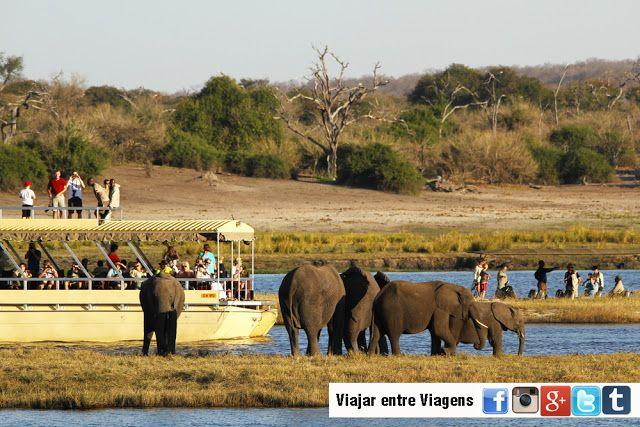 Parque Nacional do Chobe