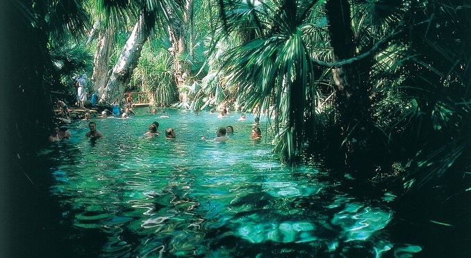 Mataranka Thermal Pool, NT