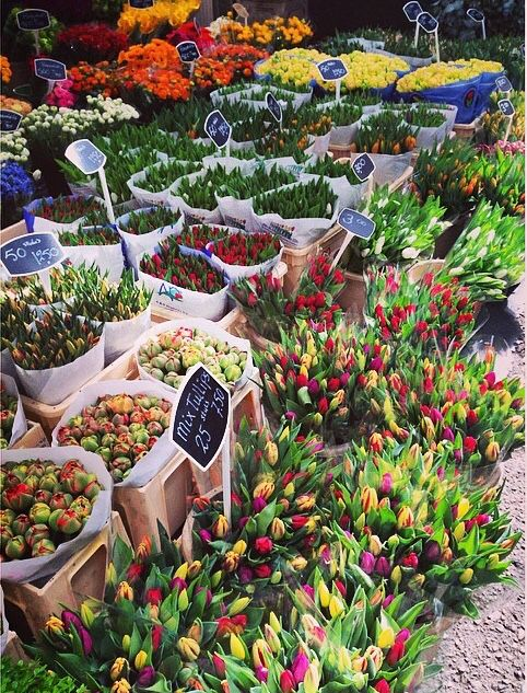Tulip market Amsterdam