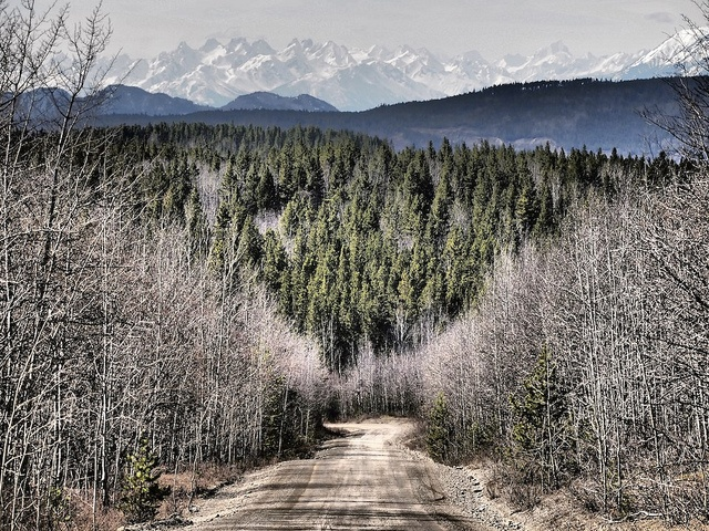 Sawtooth mountains on the Telegraph Creek road