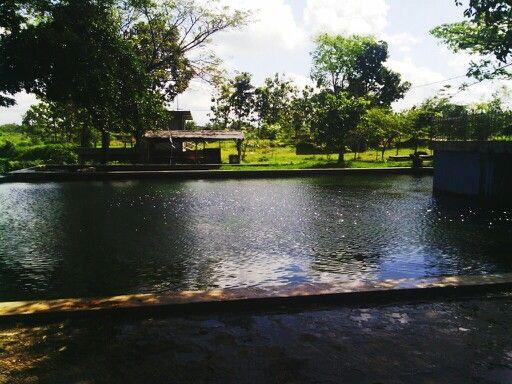 Umbul Cokro, Jawa tengah, Indonesia