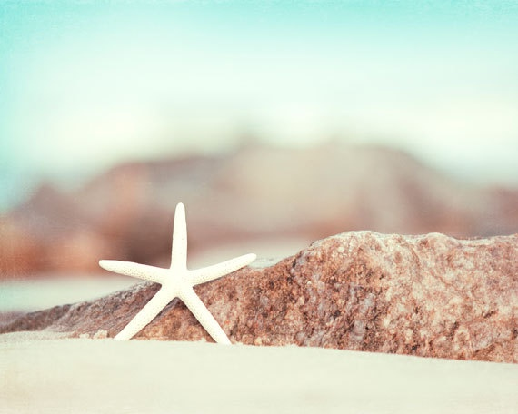 "11x14 Starfish Print - beach photography - aqua blue white beige brown - coastal wall art decor - star fish photograph light, ""Lucky Star"". $50.00, via Etsy."