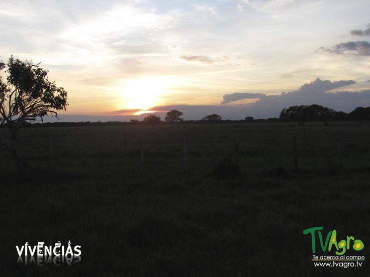 Vivencias: Especial los Llanos Orientales