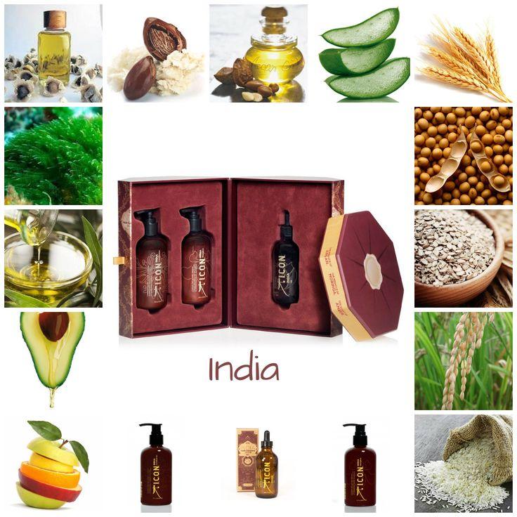 Manteca de Karité, Aloe Vera, Aceite de Aguacate, Aceite de Oliva, Aceite de Moringa, Aceite de Argán, Proteínas de Trigo, Proteínas de Soja, Proteínas de Arroz, Proteína de Avena, Extractos de Algas, Vitaminas A, B, B5, C, E...¿Que por qué India es el mejor regalo para tu cabello y el de los tuyos?