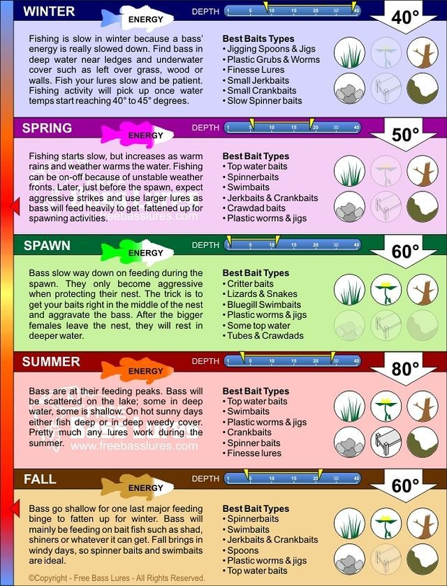 Seasonal Fishing Cheat Sheet