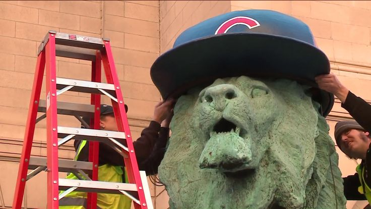 CHICAGO -- The Chicago Cubs championship run is making them part of another tradition in Chicago.  For the first time ever, the lions outside the Art Institute of Chicago will be wearing Cubs caps.  The caps were installed around 8 a.m. Monday.  The lions also wore helmets for the Bears, White Sox, and the Blackhawks during their championship runs also.