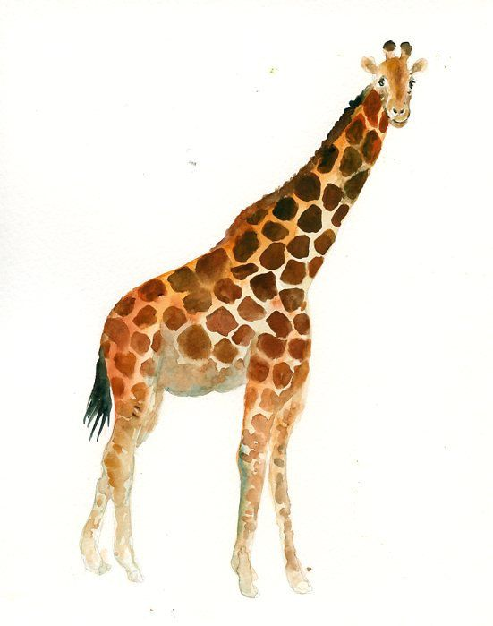 GIRAFFE Original watercolor painting 8x10inch (Vertical orientation)