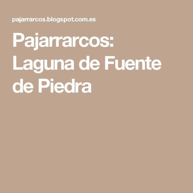 Pajarrarcos: Laguna de Fuente de Piedra
