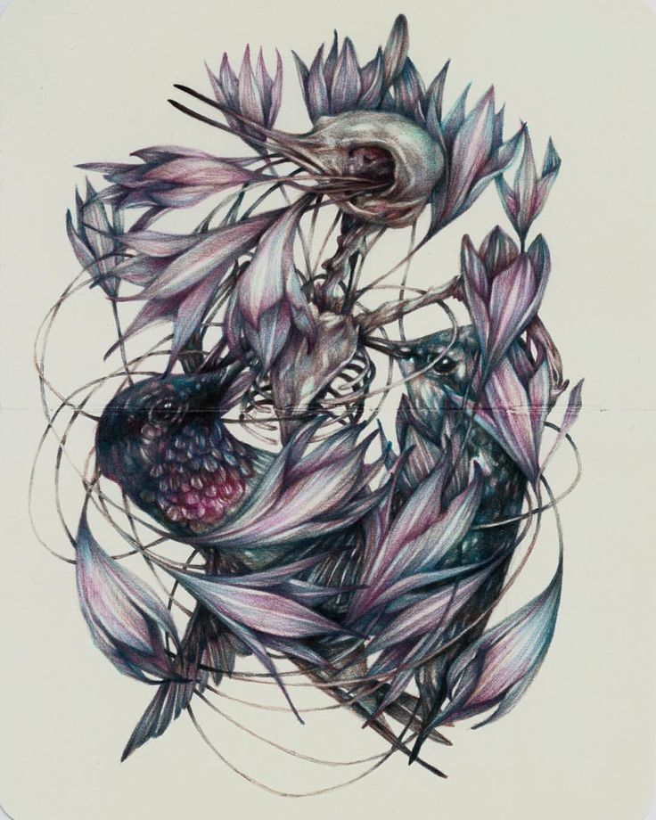 158 best Marco Mazzoni images on Pinterest | Crayons, Colored ...