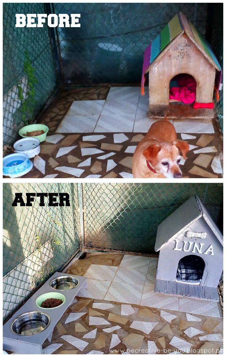 My old girl's house turned into a palace!  Before and after the renovation. #beforeandafter #doghouse #diy #doghousediy