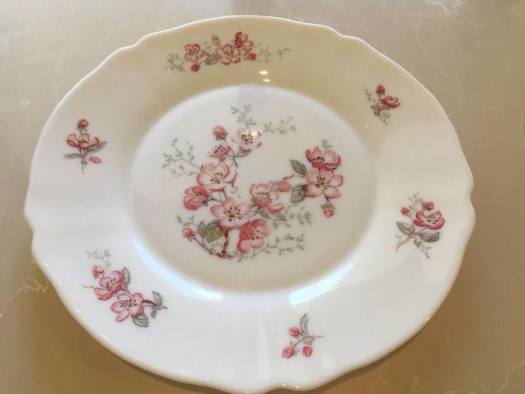 Vintage Arcopal 'Florentine' Dinner Plates