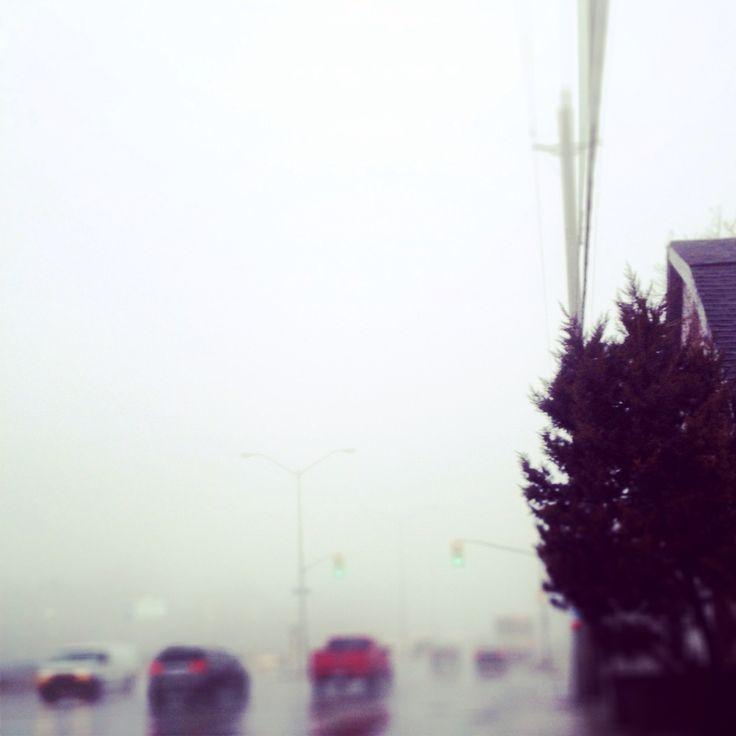Foggy day - Scarborough Bluffs
