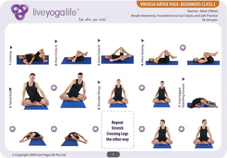 Vinyasa Hatha Beginners Class 3 Yoga Flow Sequence