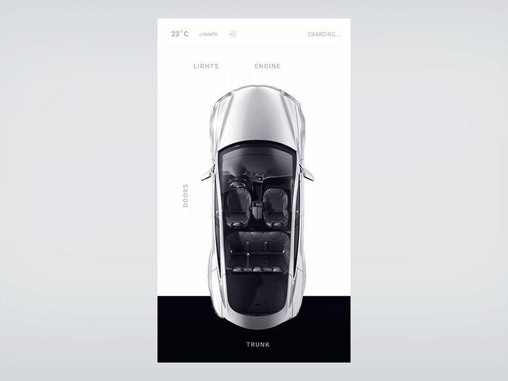Tesla doors