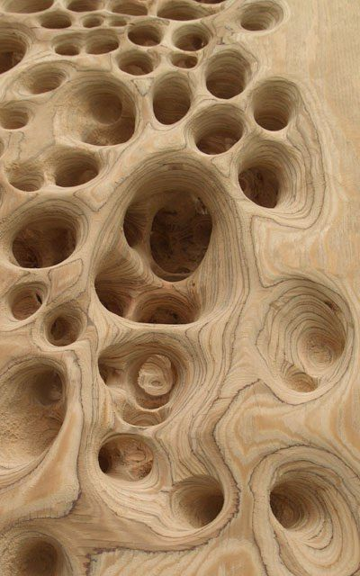 """Michael Kukla carved wood sculpture:   """"By drilling and grinding out cellular-like structures, I try to create an organic surface that seems naturally transformed."""""""