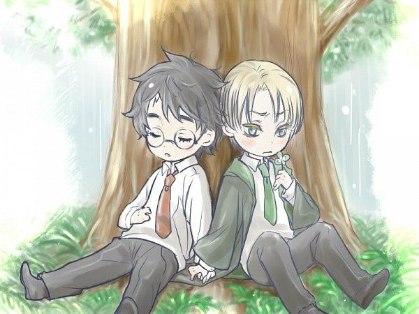 231 Best Images About Drarry On Pinterest