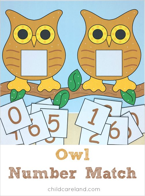 Owl number match for number recognition and review.