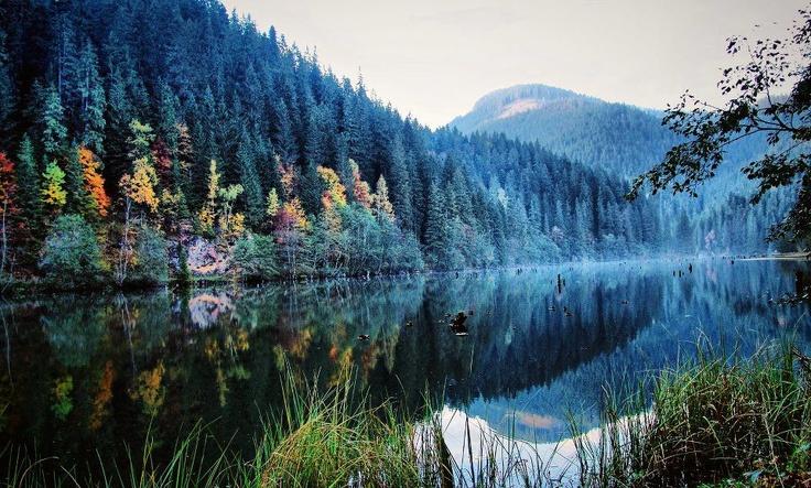 Red Lake, Harghita region - ROMANIA    Lacul Rosu, Harghita - ROMANIA