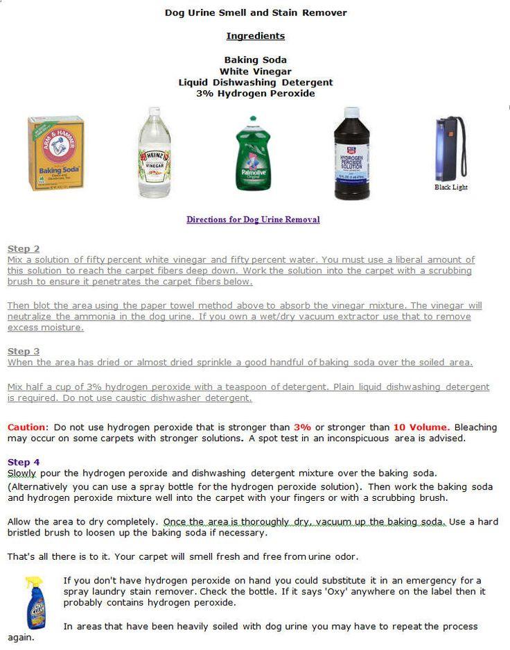 Dog Urine Remover Formula