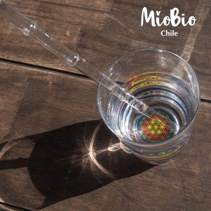 Vaso Jasmina Happy+ Bombilla Calamus a un valor especial, visítanos. http://www.miobio.cl/ofertas/