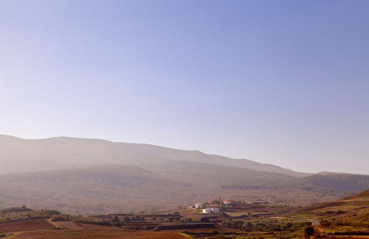 Finca de los Arandinos in Entrena, La Rioja