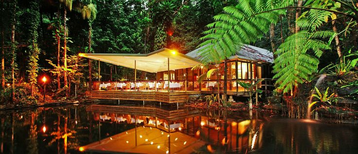 Daintree EcoLodge & spa is considered by Trivago to be one of the finest green hotels in the world