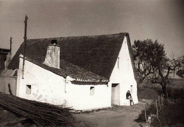 Barraca del Pollastre, situada en las barracas de Lluna, Benicalap, al lado de la Ciudad Fallera. Actualmente en su lugar transcurre la avenida de Juan XXIII (Ronda Norte).  Sentada en la barraca: Pilar. Foto hecha en 1970 por Ángel Martínez.
