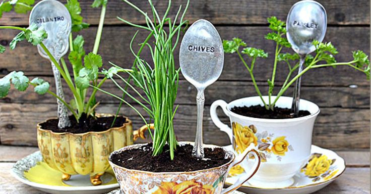 10 Awesome Upcycled Herb Garden Ideas