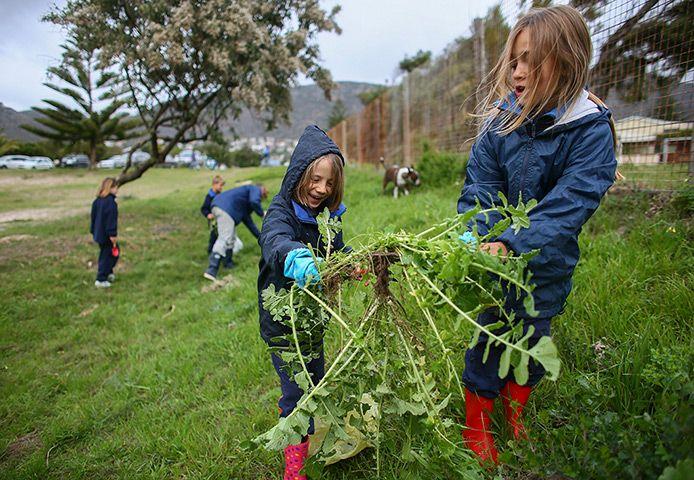 Mandela's birthday: Schoolchildren work in a public park in honour of Nelson Mandela