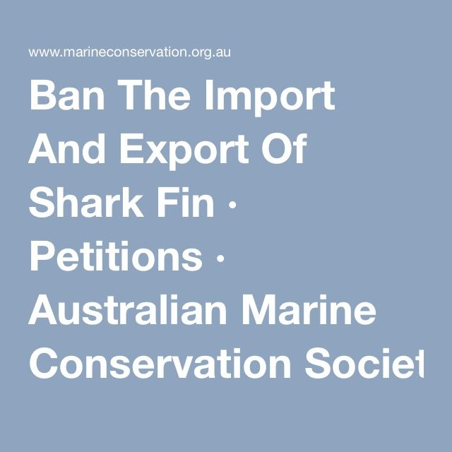Ban The Import And Export Of Shark Fin · Petitions · Australian Marine Conservation Society