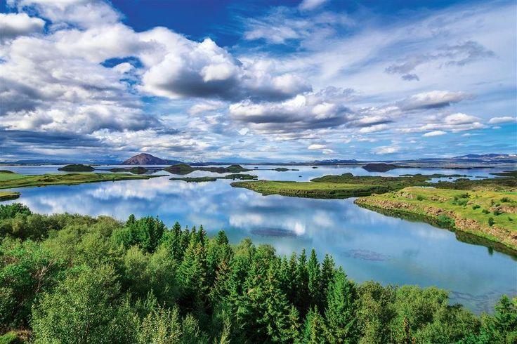 Lago Myvatn - ISLANDIA  Por su buen clima y su escasa profundidad es el hogar de 70 especies de aves.