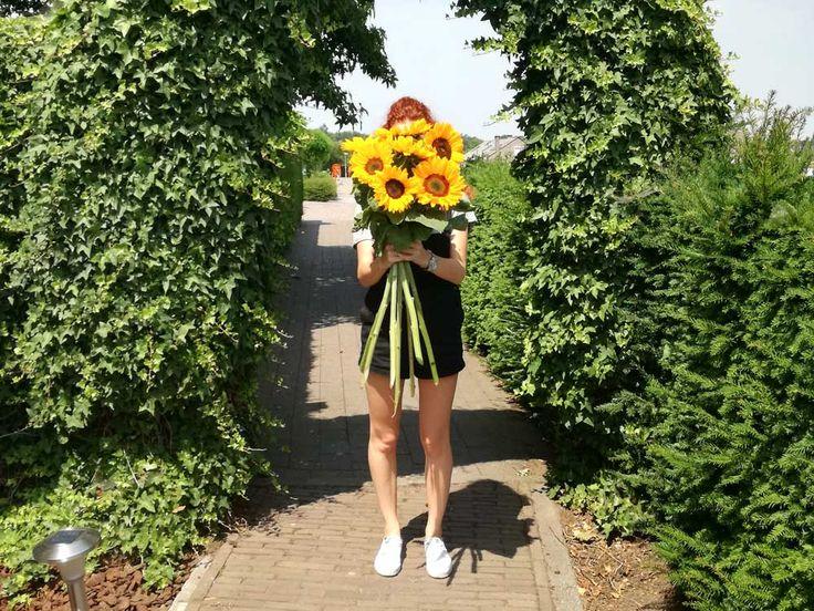Zonnebloemen zijn hét symbool voor de zomer. Dankzij de grote bloemen en gele blaadjes is het net de stralende zon die een ieder vrolijk maakt en het zomerse gevoel meegeeft. Daarbij zijn de zonnebloemen makkelijk te kweken en leveren zij bovendien nuttige en gezonde producten als zonnebloempitten en zonnebloemolie…