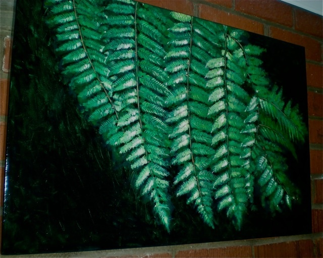 The Fern again in a different light