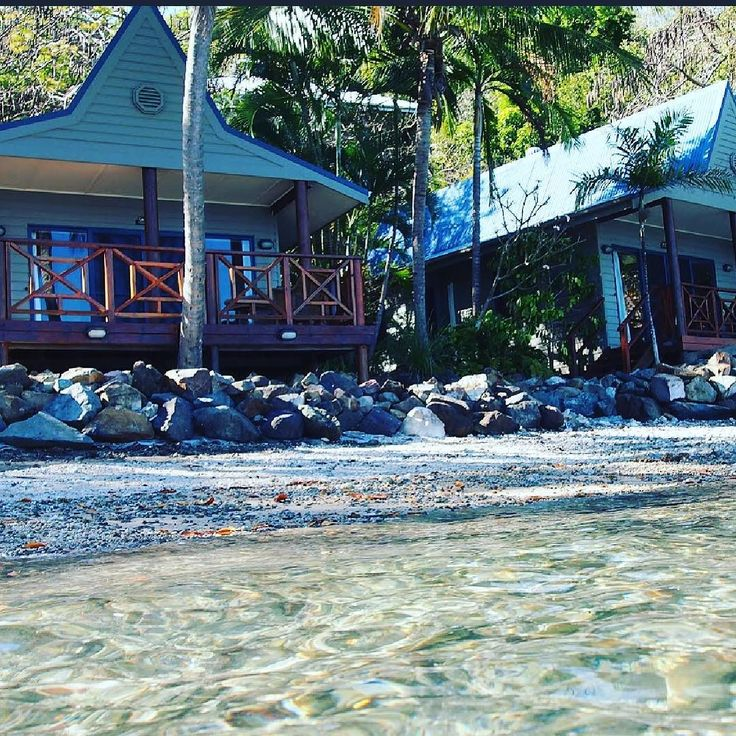 Good morning from Palm Bay Resort #platinumhouse #palmbayresort #palmbay #Whitsundays #hamiltonisland #airliebeach #longisland #greatbarrierreef #sevenwondersoftheworld #sun #beach #resort #holiday #cocktails #secluded #secretgetaway #weddingdestination #hens #paradise #australia #travel #beachbum #queensland by platinum_house http://ift.tt/1UokkV2