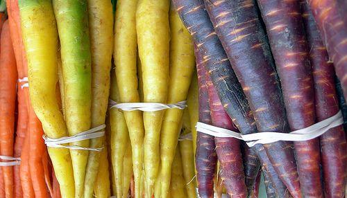Best Fruits, Vegetables and Herbs to Grow for Beginners: Fruit, Container Garden, Food, Vegetables, Gardening, Beginner