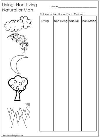 living and non living things worksheet science pinterest worksheets and autism. Black Bedroom Furniture Sets. Home Design Ideas