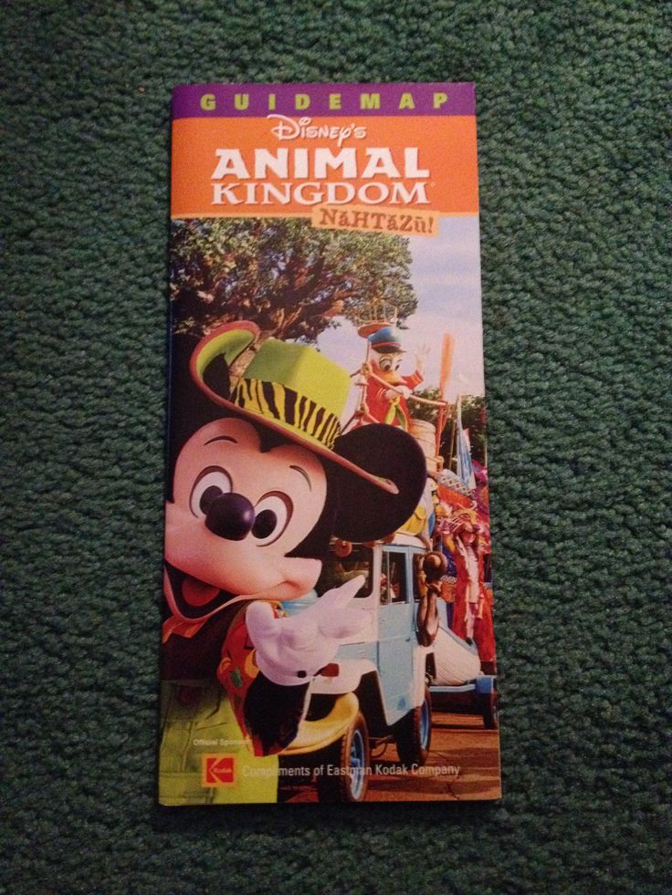 California Map Disney%0A Wide animal kingdom      guide map