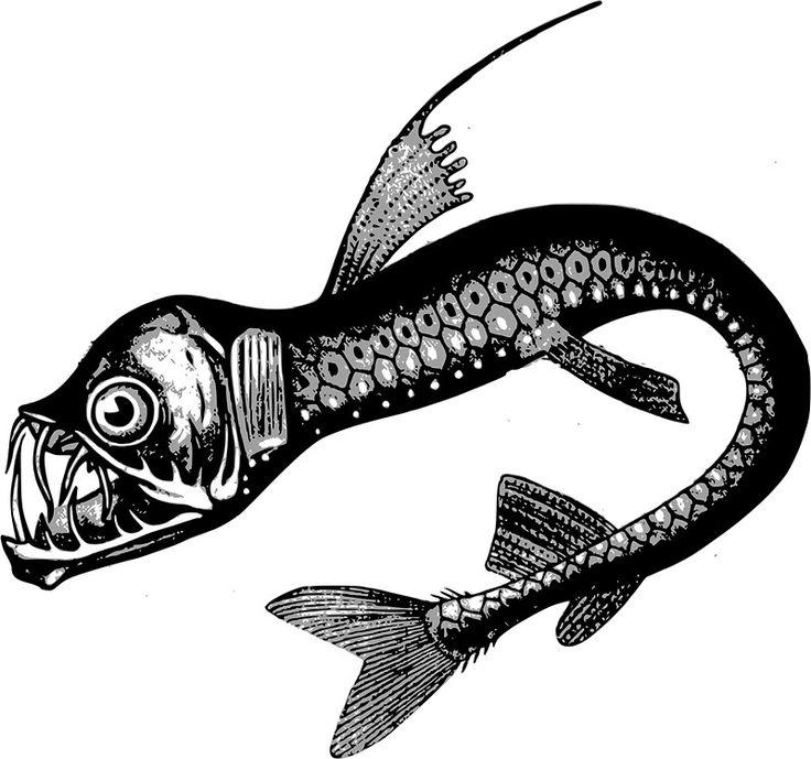 Real Sea Monster