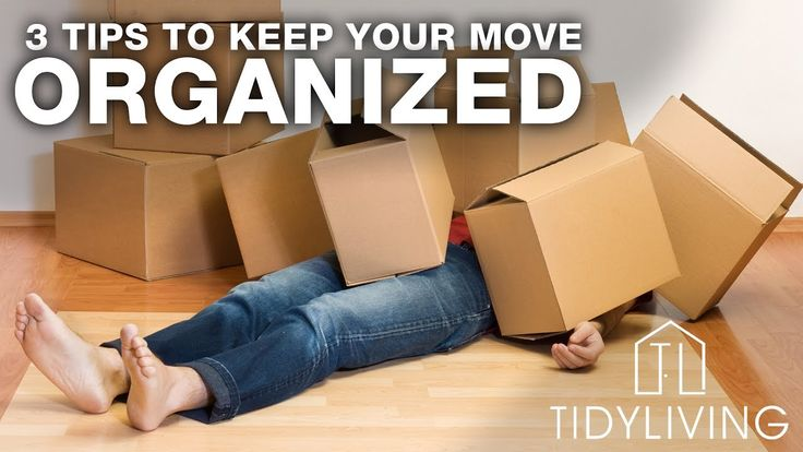 3 Tips to Keep Your Move Organized | Tidy Vlog Ep 01 | TidyLiving.com