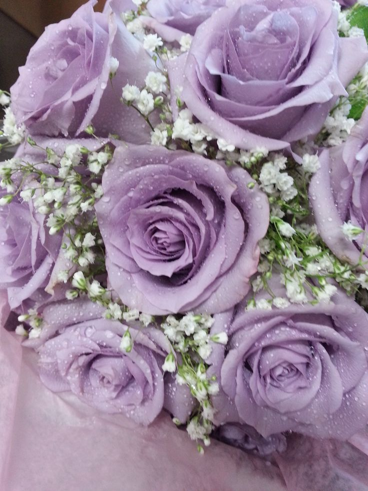 Purple Roses With Babys Breath Bouquet