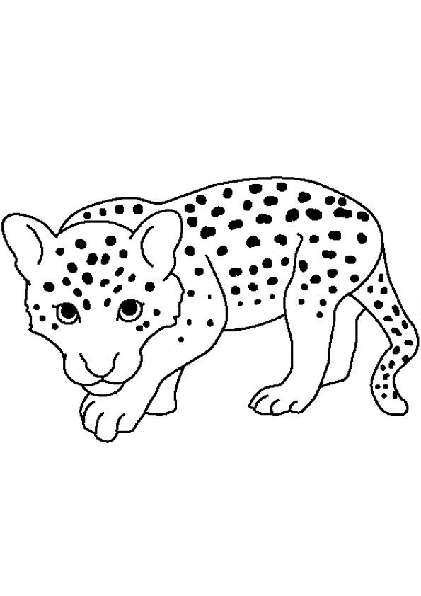 Baby Cheetah Coloring Page Coloring Pages Baby Leopard Online Coloring Pages